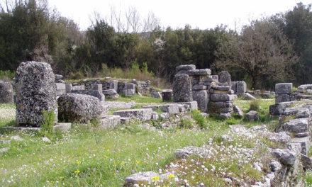 Basilika som bygningstype